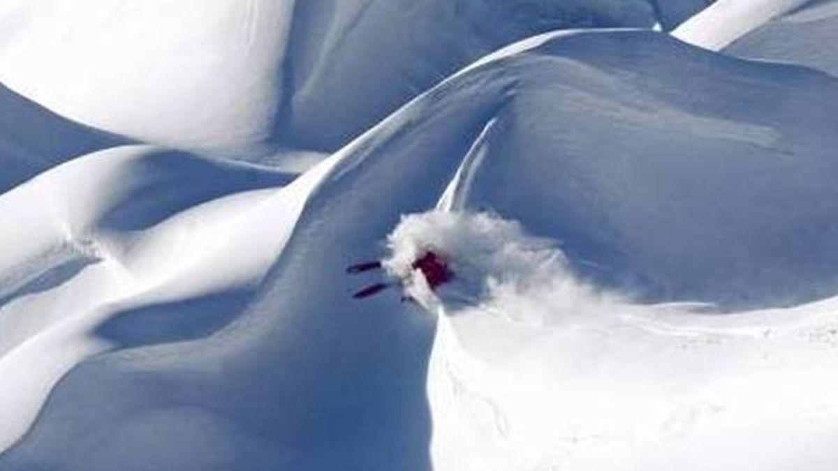 Freestyle skiing generic