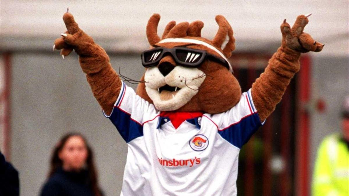 Daddy Cool, Wakefield Wildcats Mascot