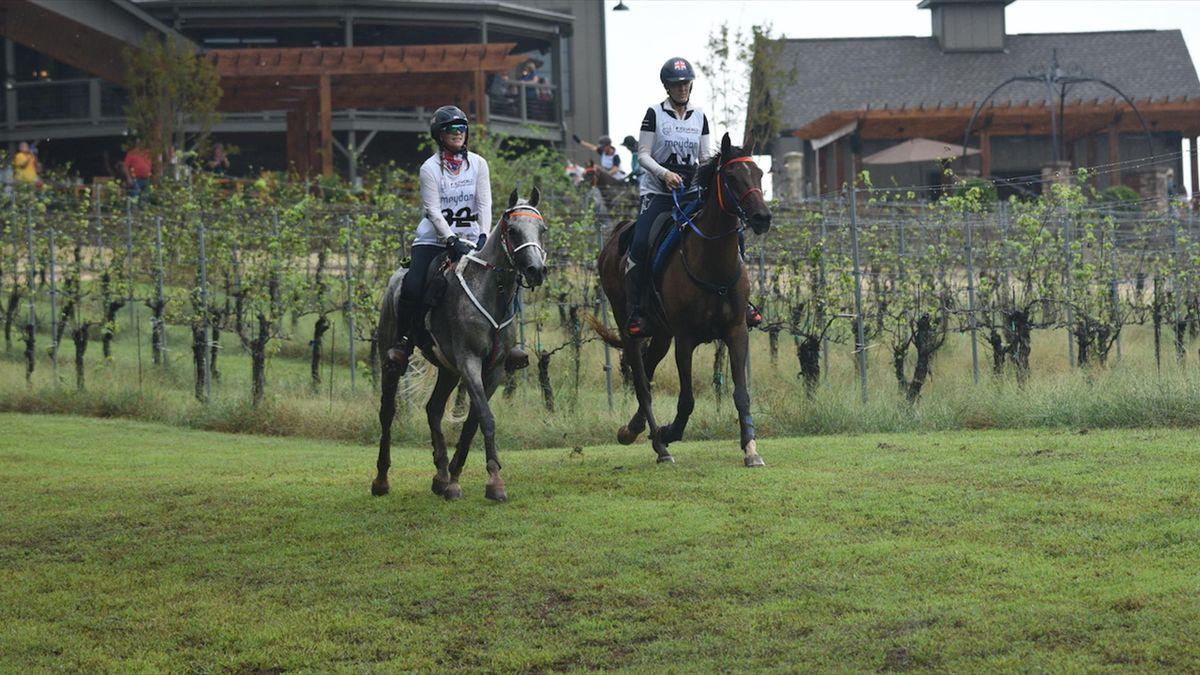 Calendrier Endurance Equestre 2021 Les Mondiaux d'endurance, programmés à Pise en septembre