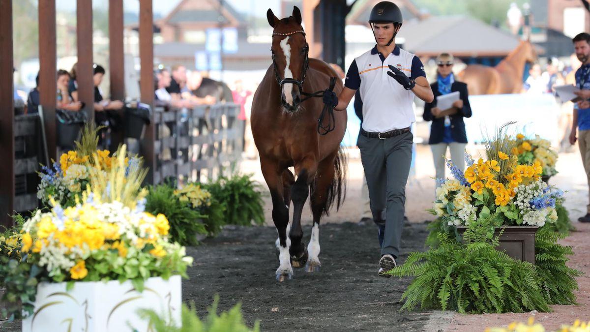 JuanMatute Guimon vuelve a subirse al caballo
