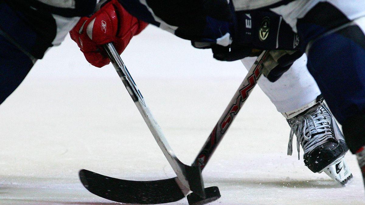 Die Nürnberg Ice Tigers verpflichten Daniel Schmölz