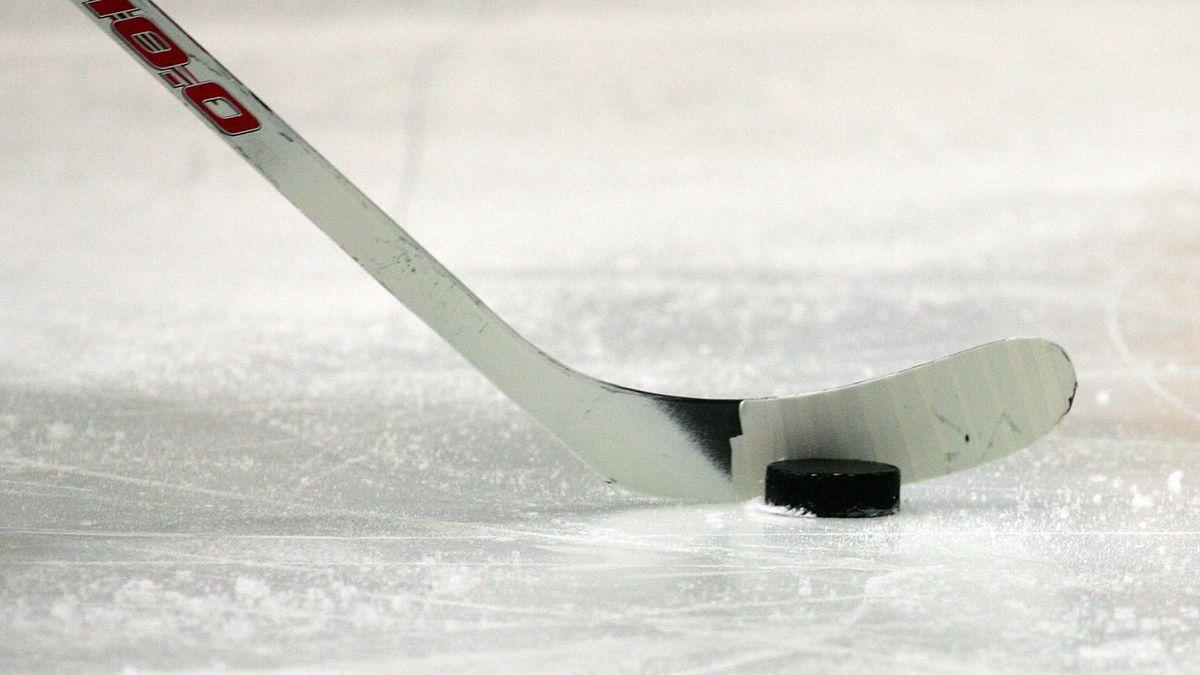 Ingolstadt verliert gegen die Schwenninger Wild Wings