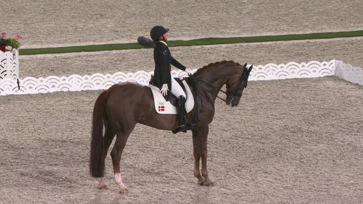 Equestrian Individual dressage - Tokyo 2020 - Olympic Highlights