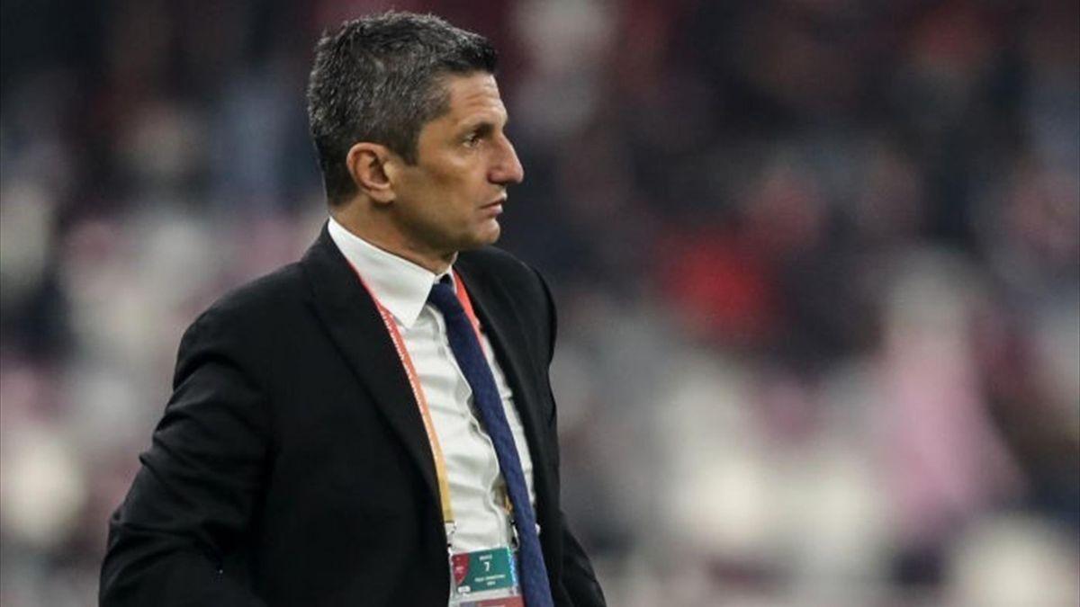 lucescu jr lose