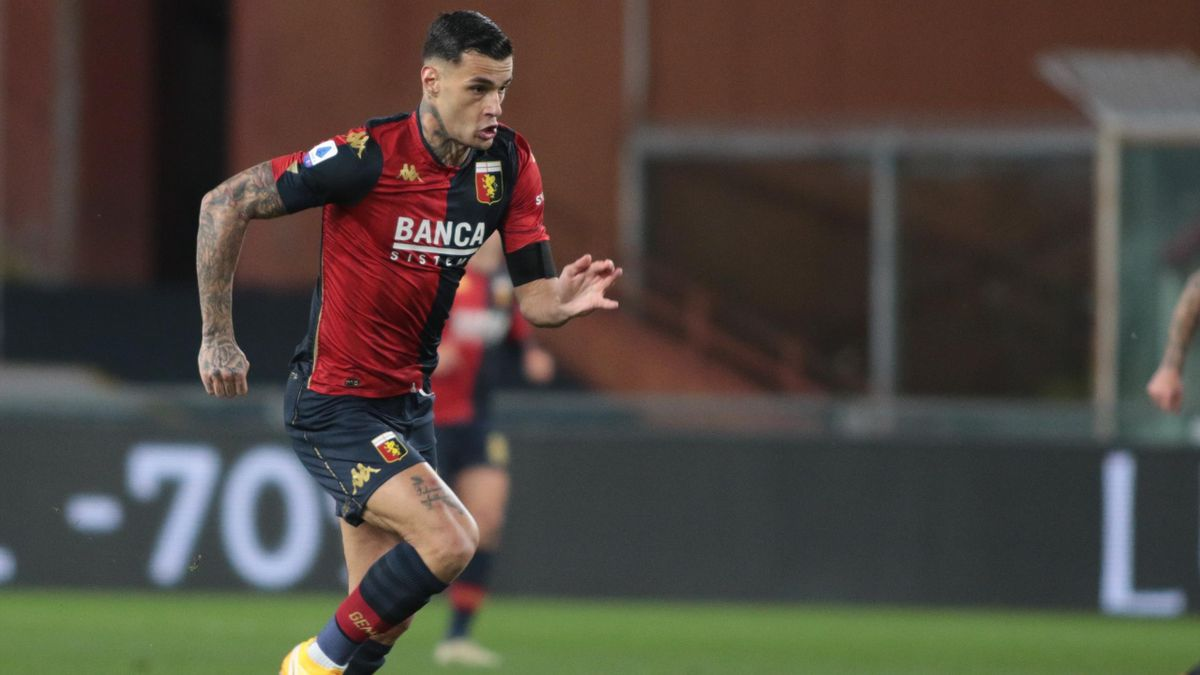 Gianluca Scamacca con la maglia del Genoa