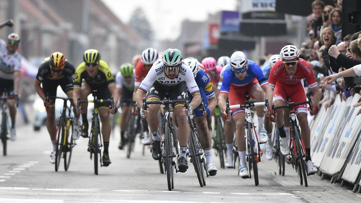 Peter Sagan lors du sprint de Gand-Wevelgem.