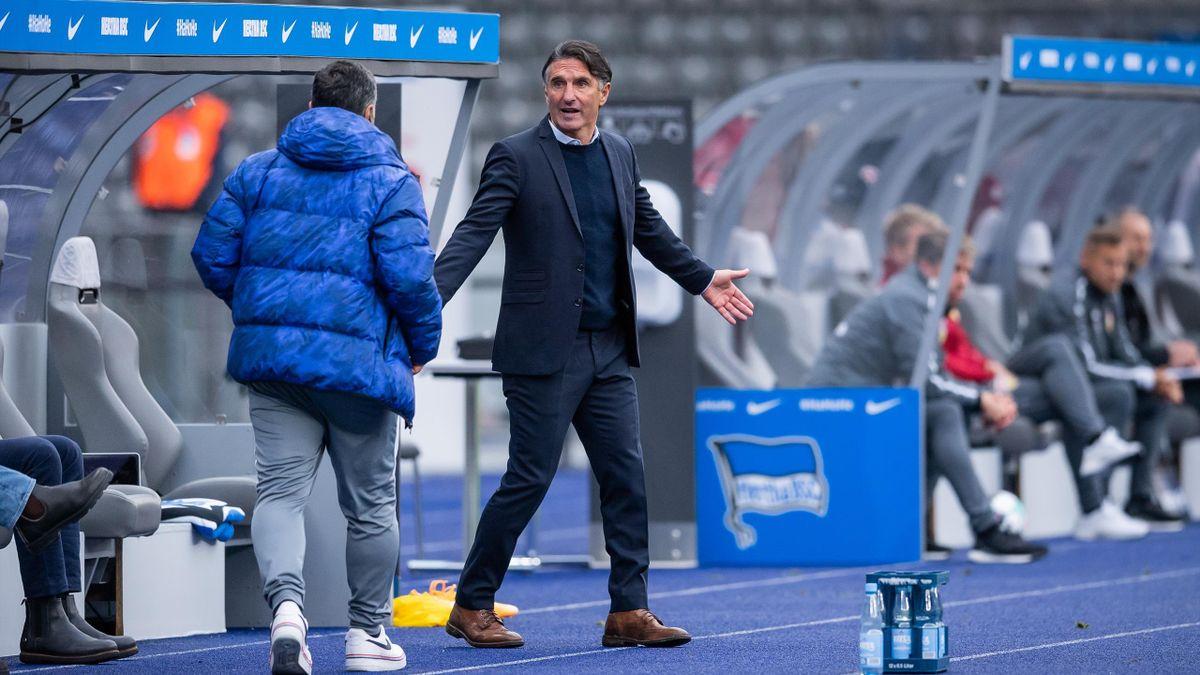 Bruno Labbadia, Hertha BSC