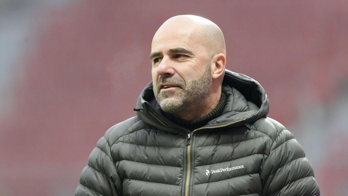 Peter Bosz, Leverkusen-Trainer