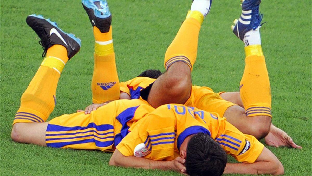 Mirel Rădoi și Răzvan Raț (Romania), la Euro 2008