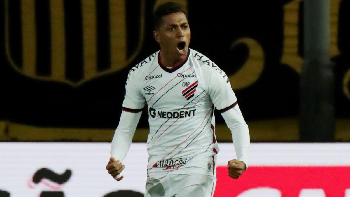Педро Роша