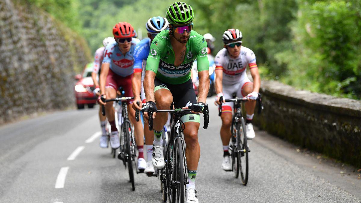 Peter Sagan poate renunța la Clasice în favoarea Giro