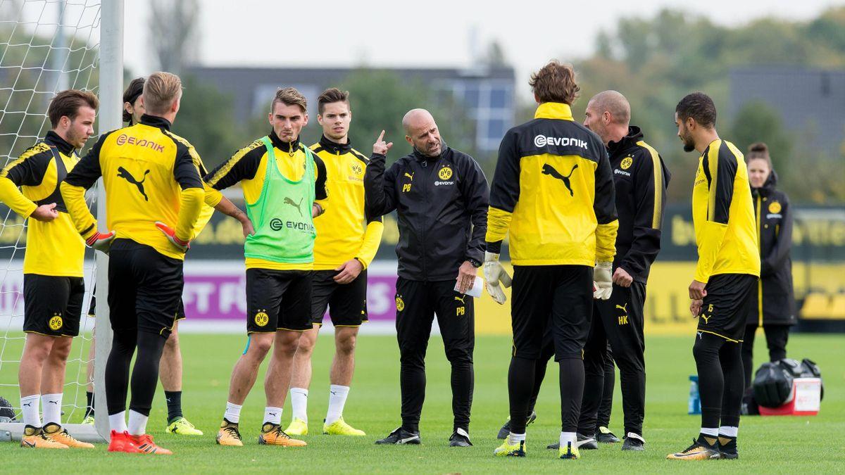 Peter Bosz, Borussia Dortmund