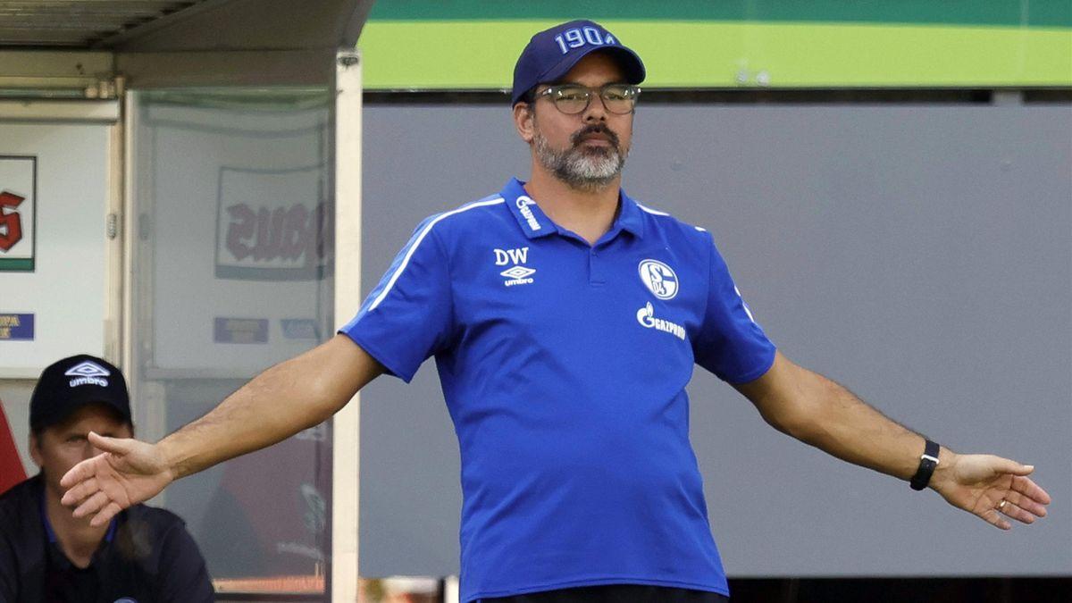 Trainer David Wagner von Schalke 04