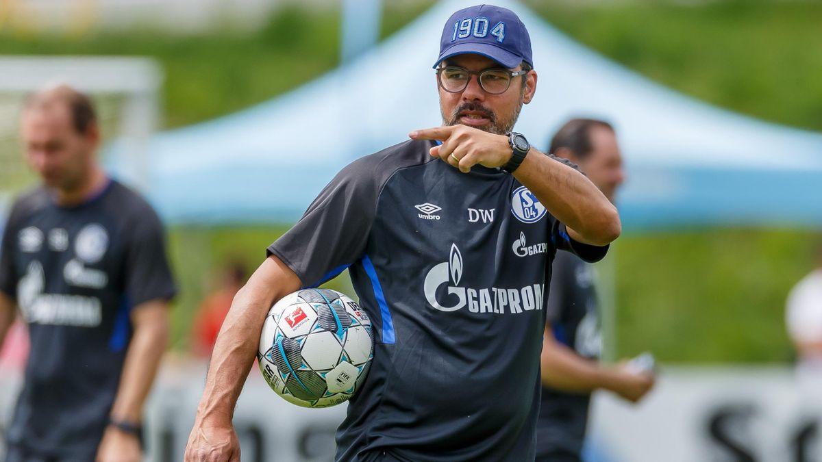 David Wagner bei Schalke 04