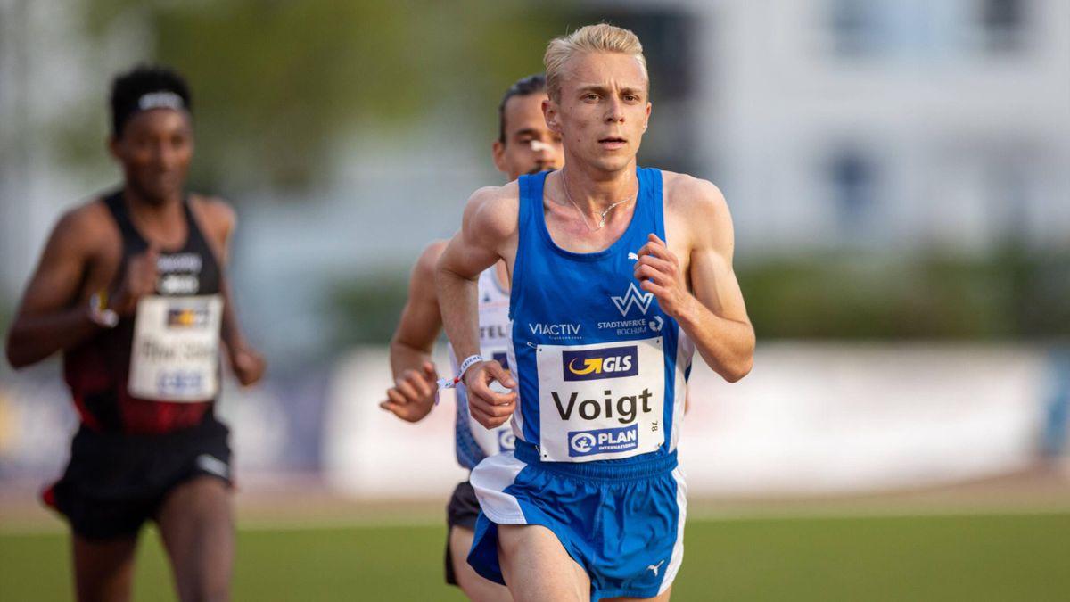 Nils Voigt