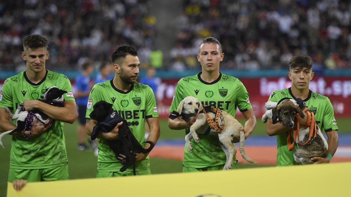 Игроки бухарестского «Динамо» с собаками