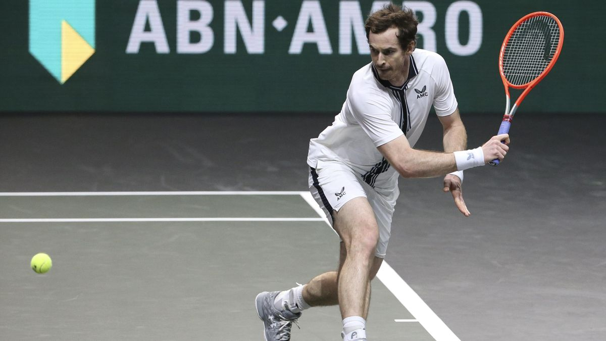 Andy Murray in Rotterdam