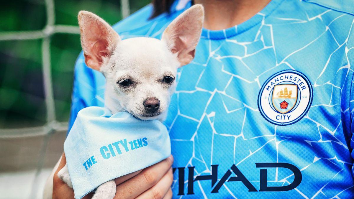 Собака футболистки «Манчестер Сити» Меган Кэмпбелл