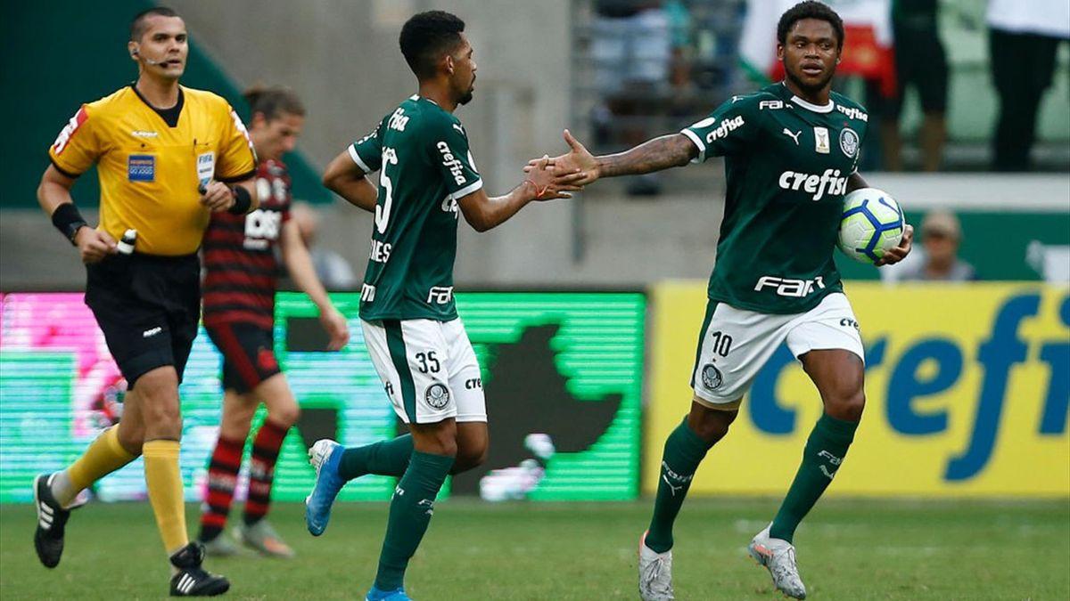 Matheus Fernandes Palmeiras