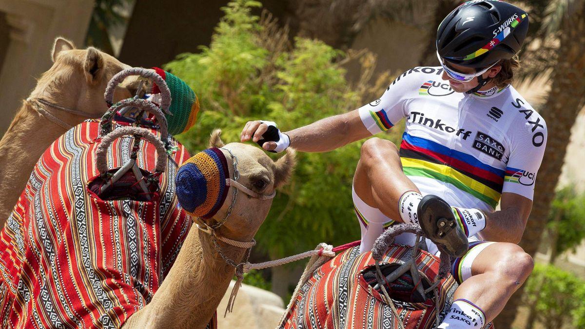 Peter Sagan, en el Tour de Abu Dhabi