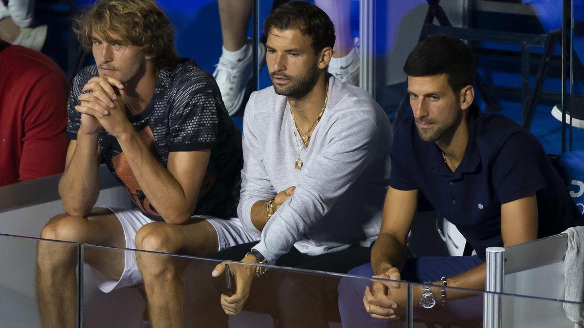 Zverev & Dimitrov & Djokovic
