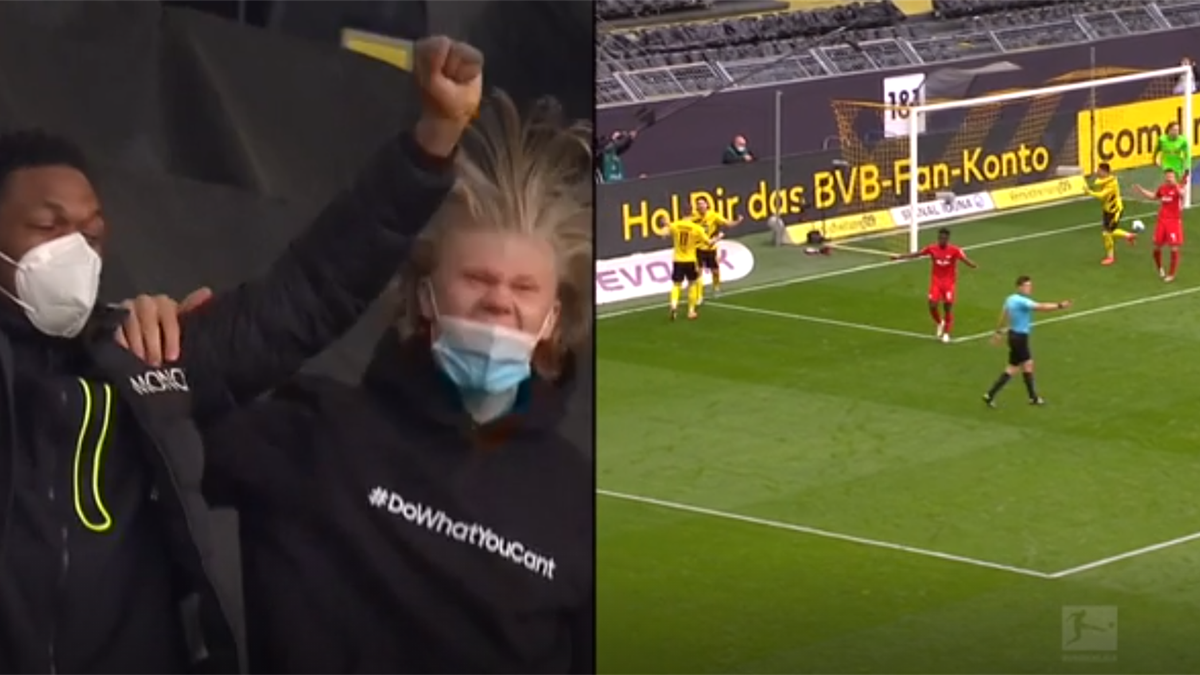 WATCH - Haaland and Bellingham go wild in stands celebrating Sancho's goal