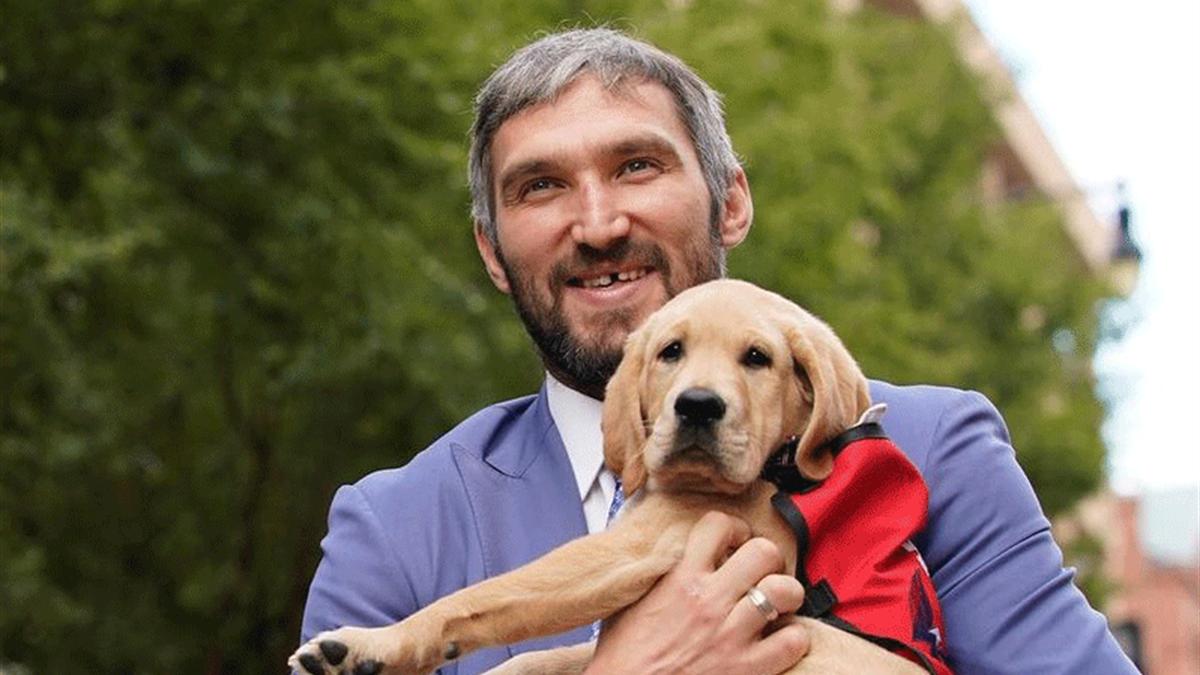 Александр Овечкин с клубным псом