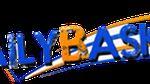DailyBasket