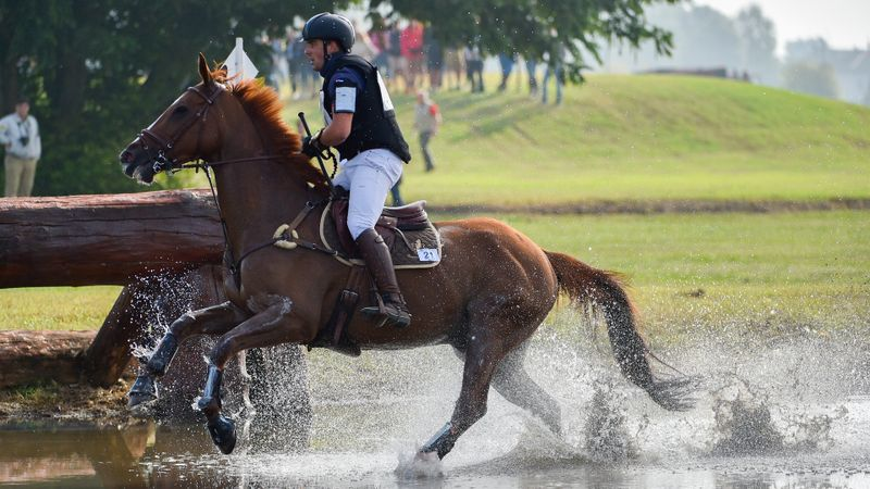 FEI Nations Cup Series