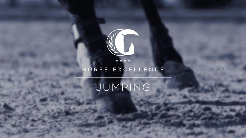 Horse Excellence: Henrik von Eckermann takes the honours in the Show Jumping