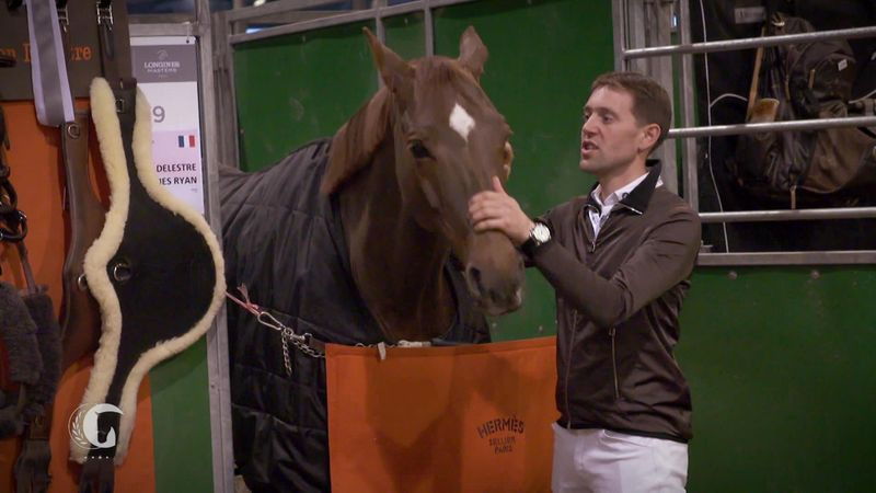Horse Excellence: Hermes Ryan and Simon Delestre (Equestrian)